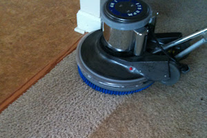 carpet buffing in nj