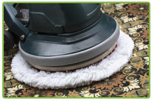 Carpet Cleaning in Jackson NJ